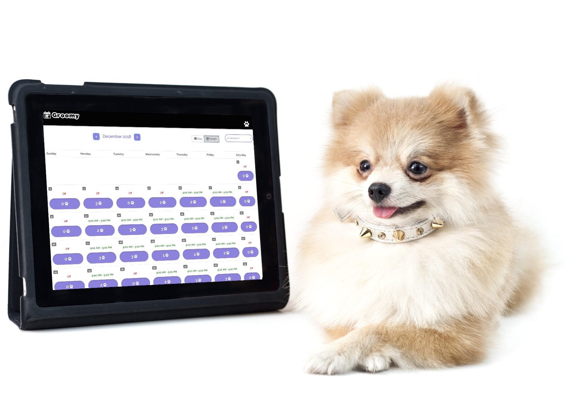 Pet Grooming Apppointment Calendar